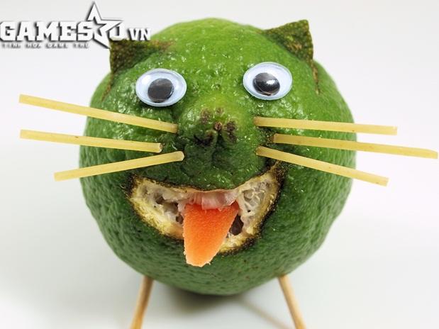 Chú mèo siêu ngộ nghĩnh được làm từ trái bưởi