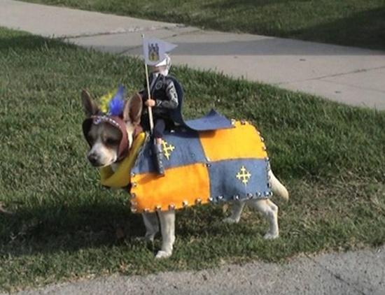 Hiệp sĩ thời trung cổ.