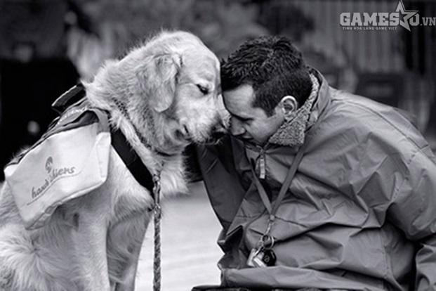 Chó là người bạn thân thiết và trung thành của con người (ảnh minh họa)