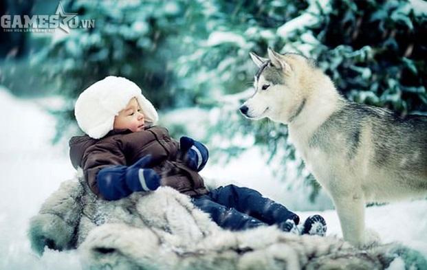 Trí thông minh của chó tương đương với trẻ từ 2 – 3 tuổi