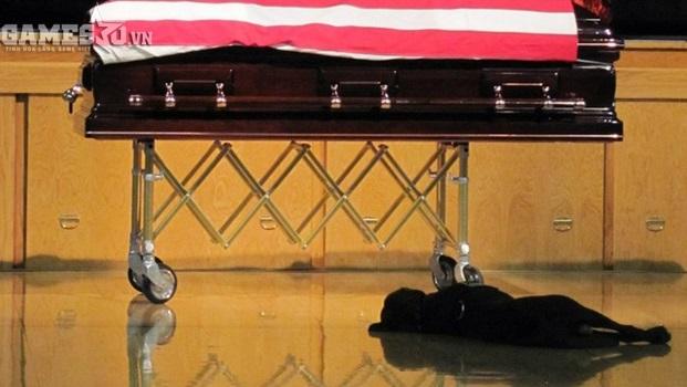 Chú chó giống Labrador tên Hawkeye này đã nằm bên quan tài của chủ nhân trong suốt tang lễ