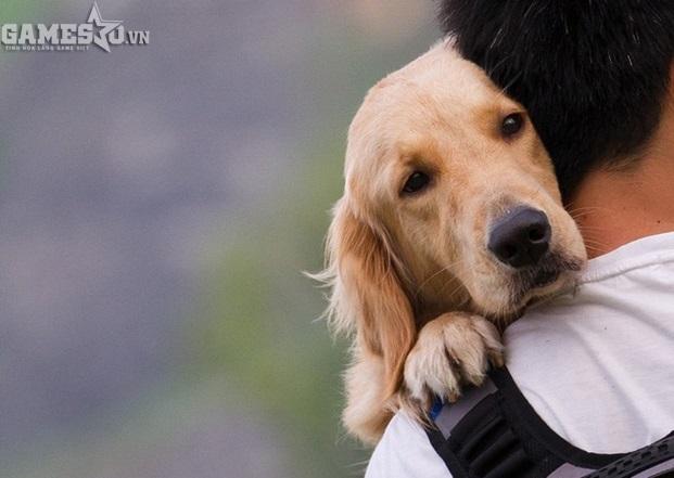 Có một sợi dây liên kết tình cảm giữa chó và con người