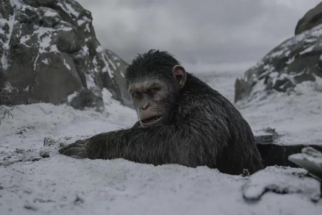 Virus đáng sợ như trong series phim Hành tinh Khỉ được xây dựng dựa trên khoa học thực tế như thế nào?